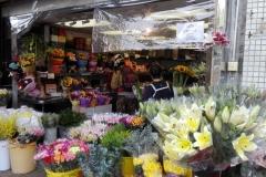 Flowermarket6