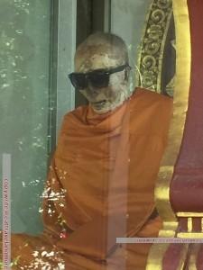 Mönch mit viel Besuch